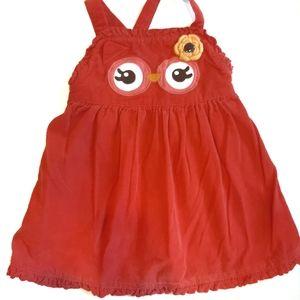 🙊3/$10🙊Gymboree Pink corduroy Owl jumper dress